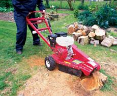 Stump grinder hire